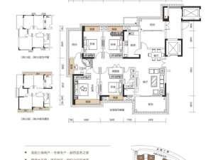 深圳东方凤雅名苑新房楼盘户型图52