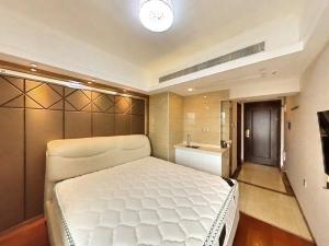 ONE39 1室0厅 45㎡ 整租_深圳罗湖区地王租房图片