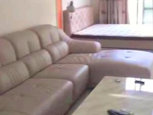 假日赛维纳 1室1厅 63㎡ 整租_深圳龙华区观澜租房图片