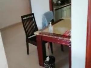 天麓花园 3室2厅 87㎡ 整租_惠州大亚湾大亚湾中心区租房图片